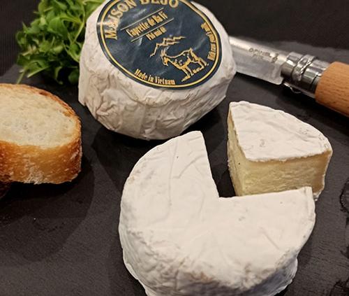 Caprette de Ba Vi, the Vietnamese goat cheese